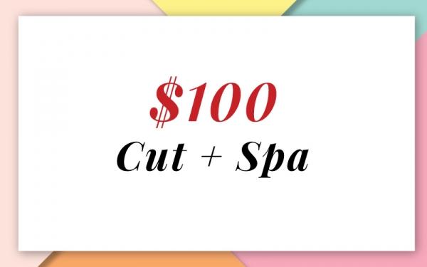 Cut + Spa Promotion - $100