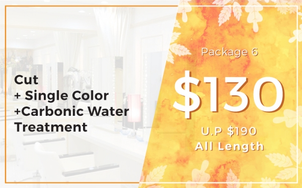 Package 6: $130 Cut + Single Color + Carbonic Water Treatment (U.P. $190) All Length