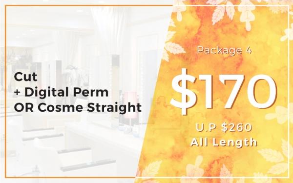 Package 4: $170 Cut + Digital Perm OR Cosme Straight (U.P. $260) All Length