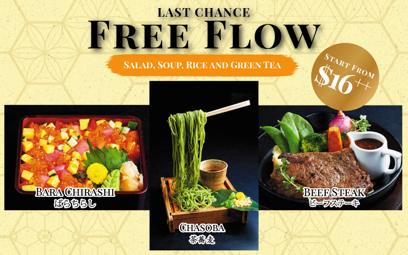 LAST CHANCE ! FREE FLOW PROMO !