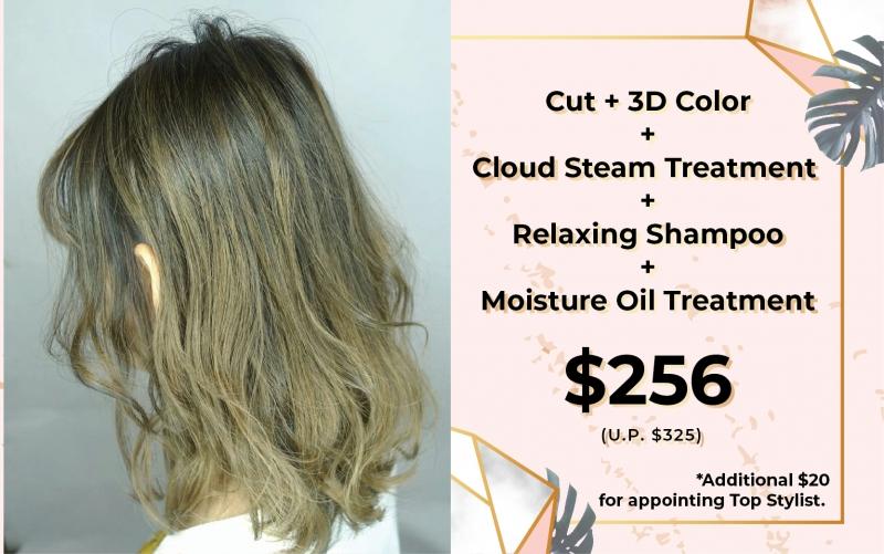 Cut + 3D Color + Cloud Steam Treatment + Relaxing Shampoo + Moisture Oil Treatment  only $256