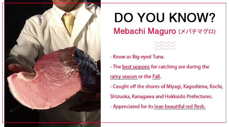 about Mebachi Maguro